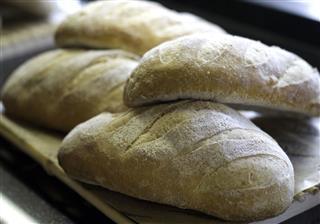 Gourmet Bread Buns