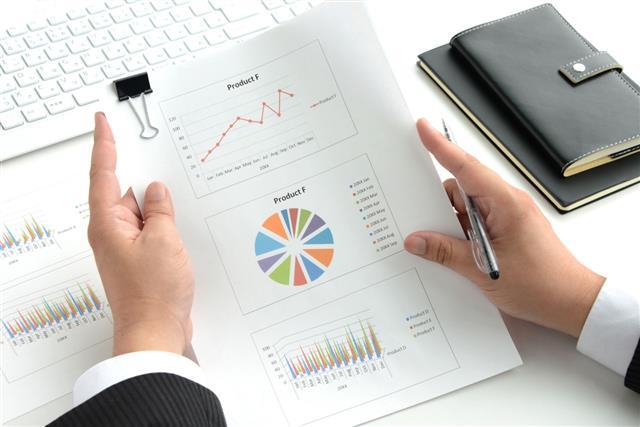 Businessman Checking Business Chart