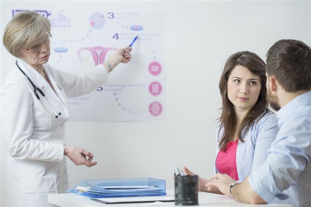 Gynecologist Using In Vitro Scheme
