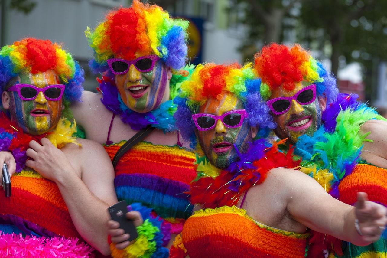 gay house new resort zealand