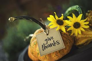 Pumpkins Gourds And Message