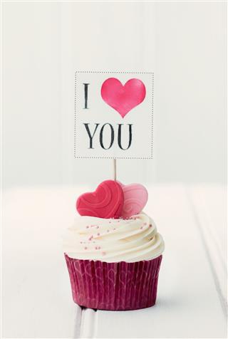 I Love You Cupcake