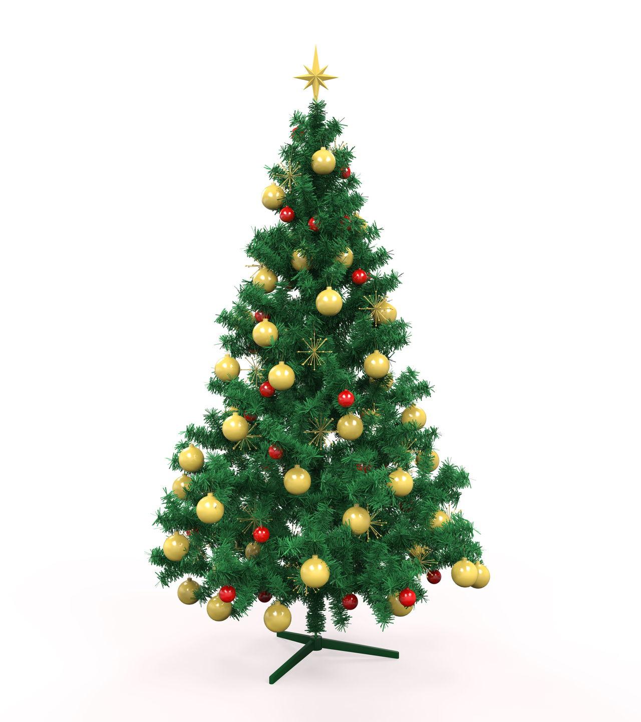 Tree symbolism christmas tree isolated biocorpaavc Images