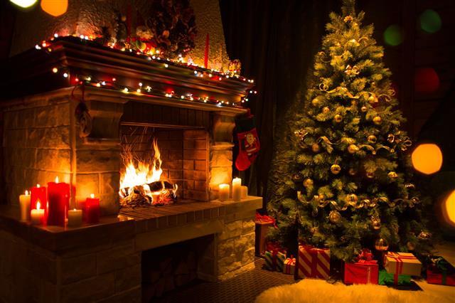 Christmas Interior With Tree