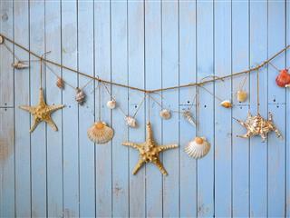 Seashells Hanging On The Rope