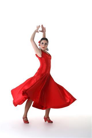 Flamenco Dance Pose