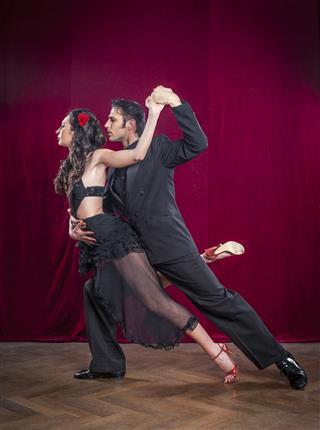Portrait Of Young Elegant Tango Dancers