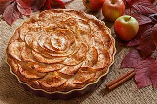 Homemade Gourmet Apple Pie