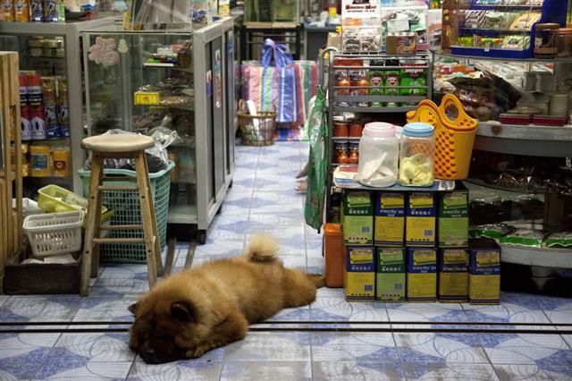 Shop By Night In Bangkok