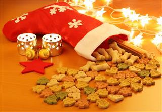 Christmas Dog Food