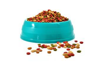 Light Blue Bowl Full Of Dog Food