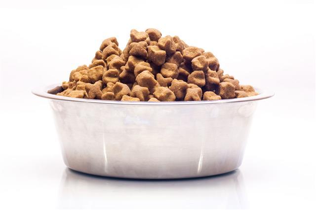 Metal Bowl With Dog Dry Food
