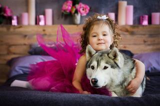 Little Girl With Husky