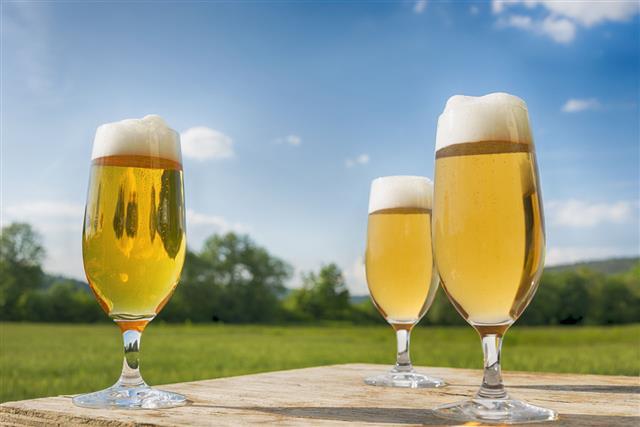 Glasses Of Fresh Beer
