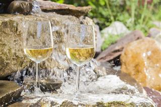 Delicious Fresh White Wine