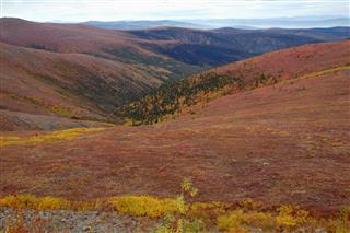 Highway Yukon Territory Canada