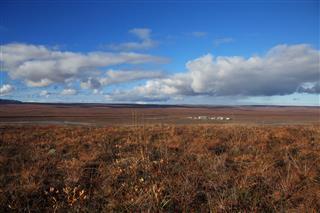 Open Tundra