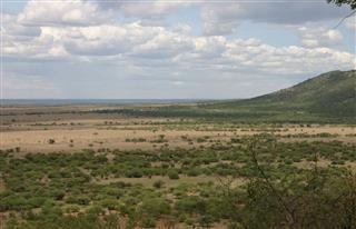 African Savannah Serengeti Tanzania Africa