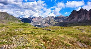 Shallow Alpine Tundra