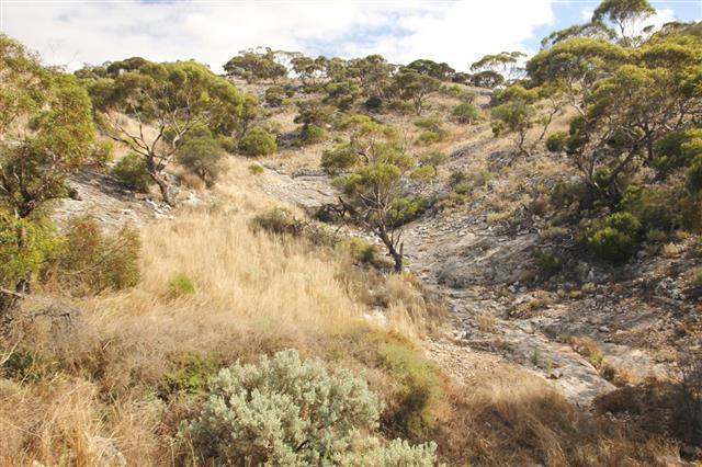 Nullarbor Plain Western Australia