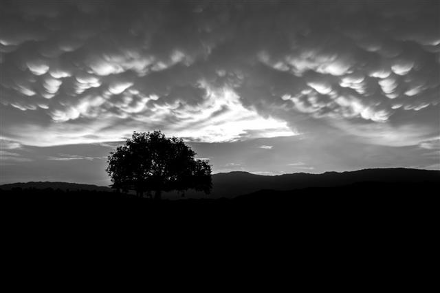 Black And White Of Mammatus Clouds