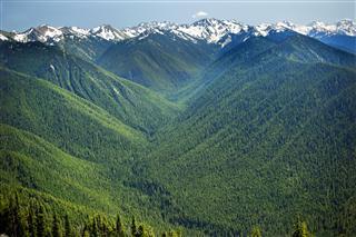 Green Valleys Snow Mountains