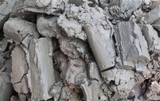Gray Mud