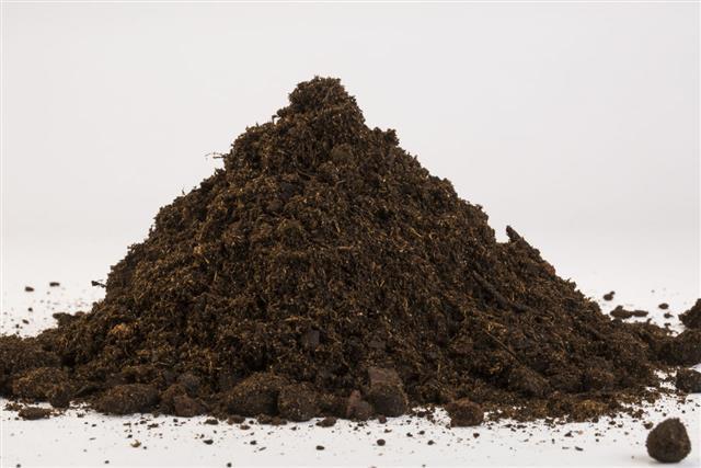 Pile Of Loam