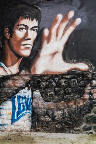 Bruce Lee On Graphite