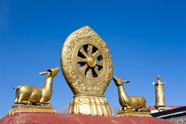 Golden Deer And Dharma Wheel