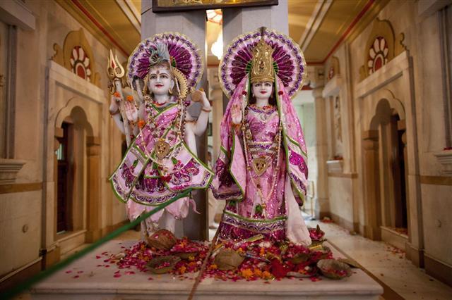 Hindu Statues In New Delhi India