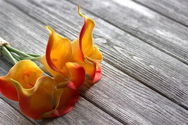 Orange Yellow Calla Lilies Bouquet