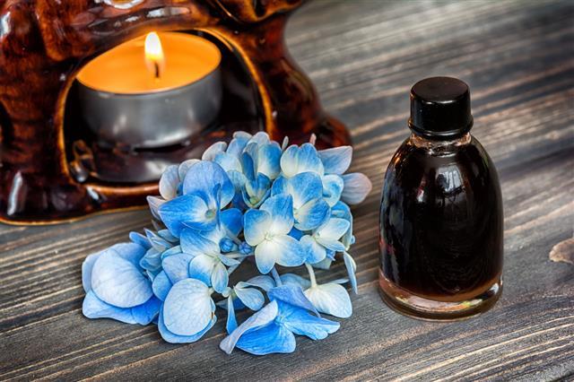 Essential Hydrangea Oil