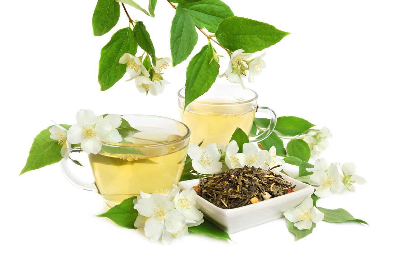 How safe is herbal tea while breastfeeding jasmine tea plumeria flower mightylinksfo