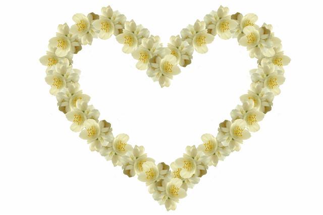 Jasmine Heart