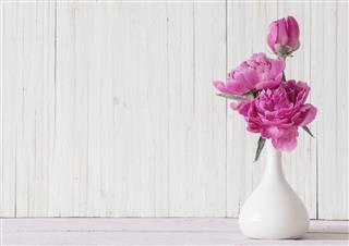 Peony Flowers In Vase