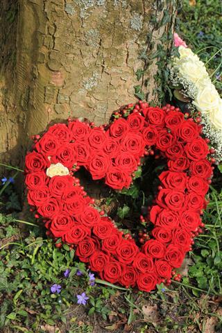 Sympathy Flowers Near A Tree