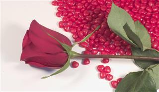 Rose and Cinnamon Hearts
