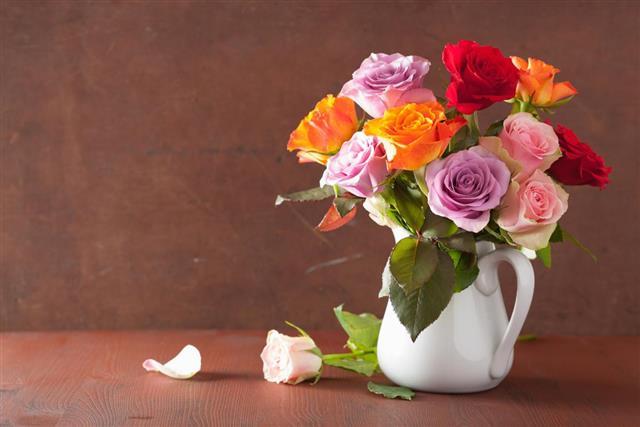 colorful rose flowers bouquet