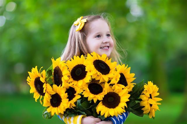 Little Girl Holding Sunflowers