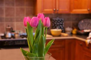 Flower In The Kitchen