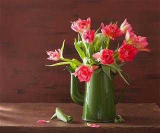 Pink Tulip Flowers Bouquet In Pot
