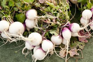 Fresh Turnips Vegetable