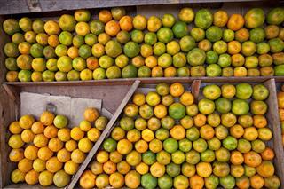 Oranges On Indian Market
