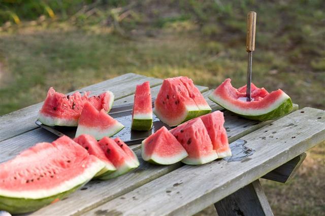 Fresh Cut Watermelon