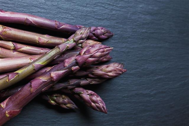 Violet Asparagus On Slate