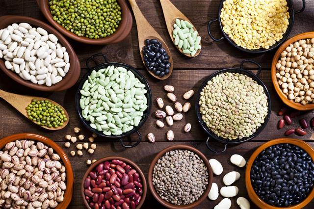Dry beans variety