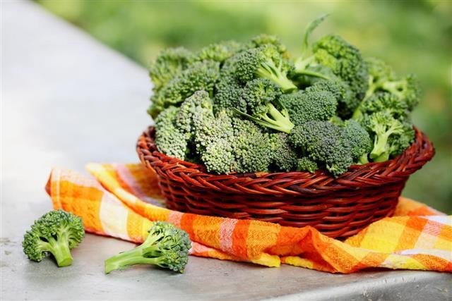 Organic broccoli in a basket