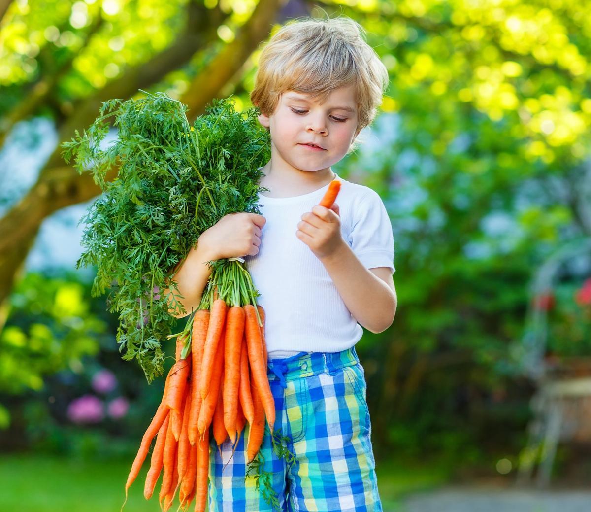 Glucose Levels in Children