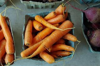 Farm fresh petite carrots